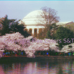 Jefferson Memorial in blue, green and red