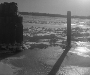 Pilings in the Potomac, ice
