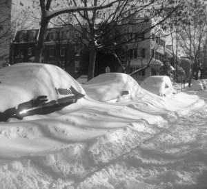 snow in Alexandria